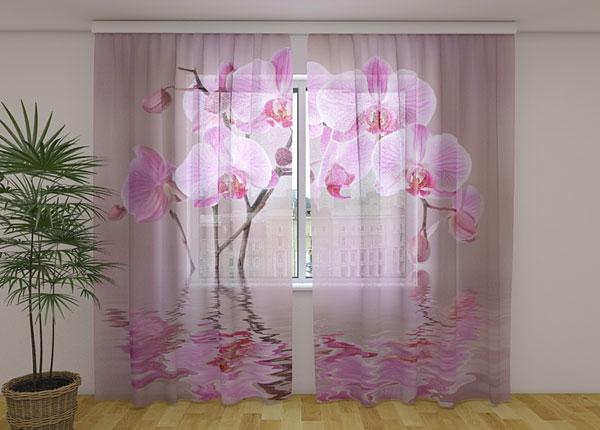 Šifoon-fotokardin Lily Orchid 240x220 cm ED-131457
