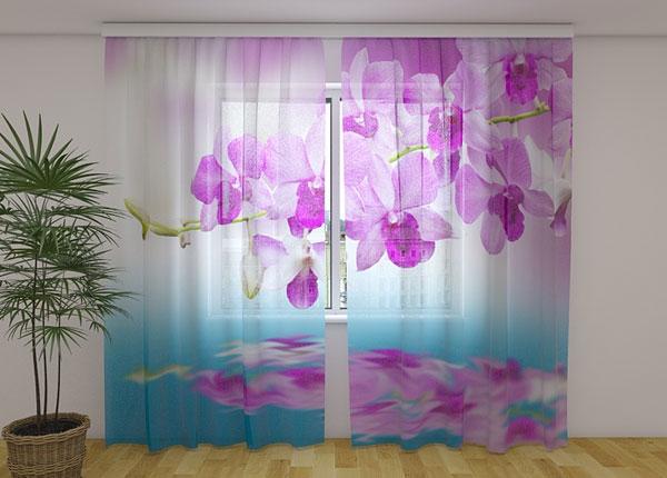 Šifoon-fotokardin Orhideya 240x220 cm ED-131464