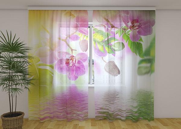 Šifoon-fotokardin Summer Orchids 240x220 cm ED-131508