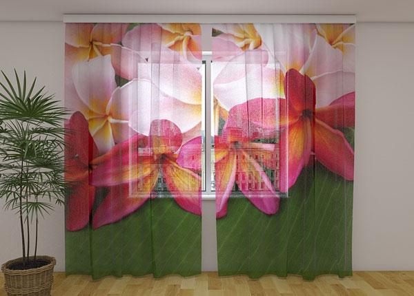 Šifoon-fotokardin Tropical Flowers 3, 240x220 cm ED-131510