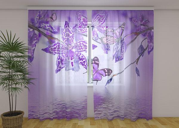 Šifoon-fotokardin Violet Orchid 240x220 cm ED-131520