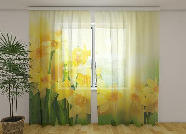Šifoon-fotokardin Yellow daffodils 2, 240x220 cm ED-131522