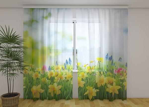 Šifoon-fotokardin Yellow Daffodils 240x220 cm ED-131524