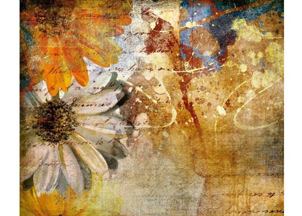Fliis-fototapeet Vintage flowers 360x270 cm ED-132624