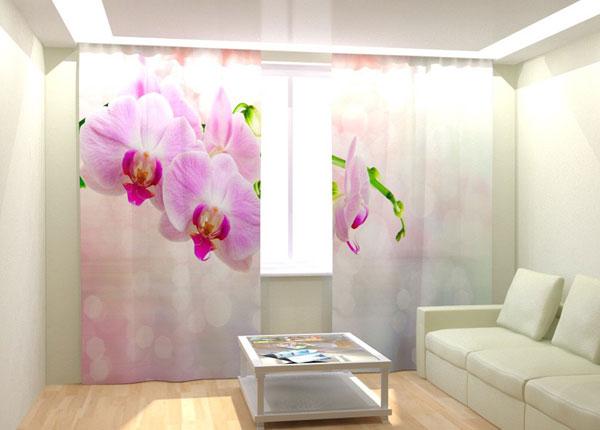 Fotokardinad Pink Orchid 300x260 cm AÄ-132998