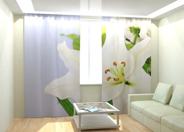 Fotokardinad Orchid 300x260 cm AÄ-133005