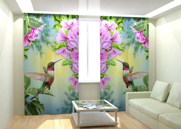 Fotokardinad Humming Bird 300x260 cm AÄ-133008