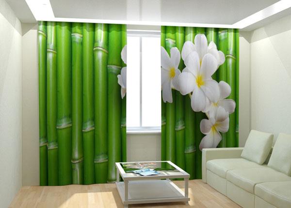 Fotokardinad Bamboo 300x260 cm AÄ-133015