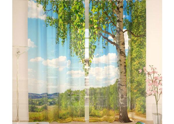 Tüllkardinad Birch 290x260 cm AÄ-134089