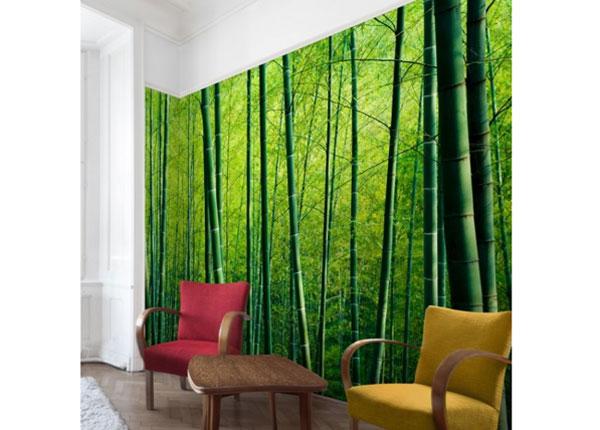 Fliis fototapeet Bamboo Forest