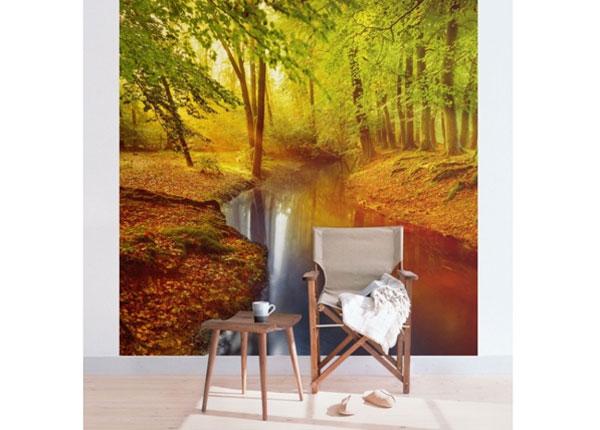 Fliis fototapeet Autumn Forest ED-135086