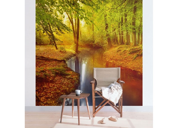 Fliis fototapeet Autumn Forest ED-135090