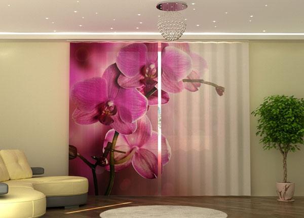 Poolpimendav kardin Purple Orchid ED-135549