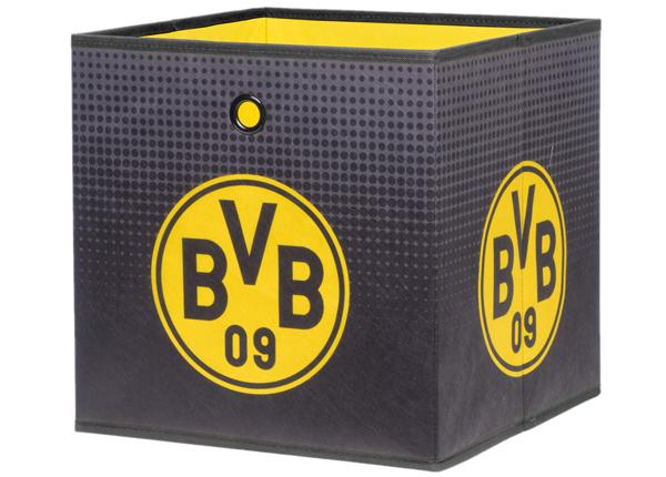 Karp BVB