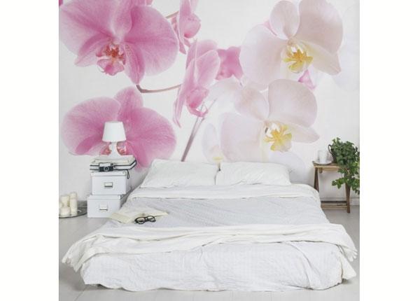 Fliis fototapeet Delicate Orchids ED-137599