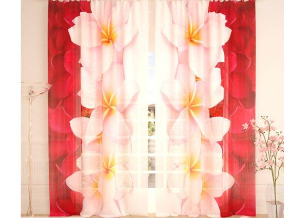 Tüllkardinad Plumeria Collection 290x260 cm AÄ-138228
