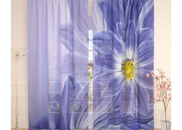 Tüllkardinad Blue Flowers 290x260 cm AÄ-138229