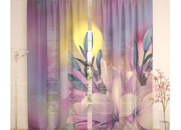 Tüllkardinad Soft Lily 290x260 cm AÄ-138230