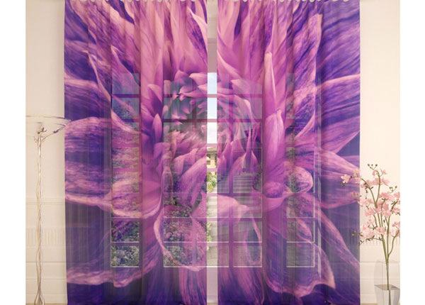 Tüllkardinad Purple Flower 290x260 cm AÄ-138239