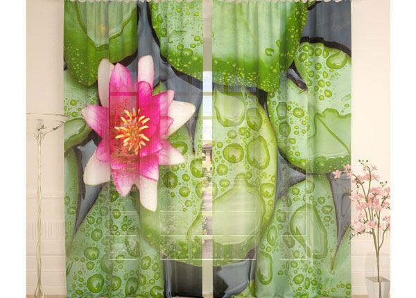 Tüllkardinad Lotus 290x260 cm AÄ-138242