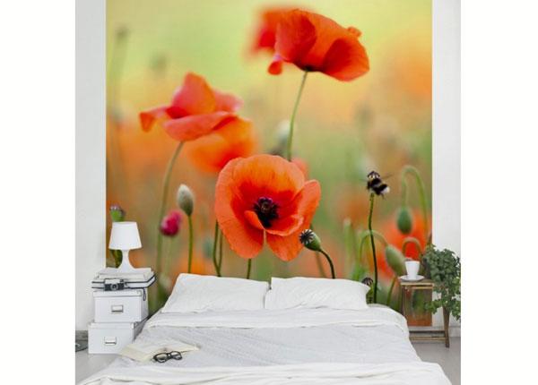 Fliis fototapeet Red Summer Poppy ED-138522