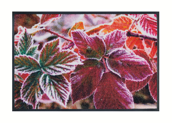 Vaip Frozen Leaves 50x75 cm A5-138661