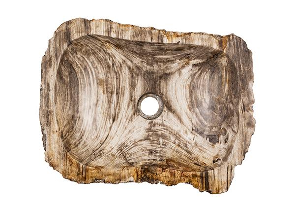 Kivistunud puidust valamu GM-139973