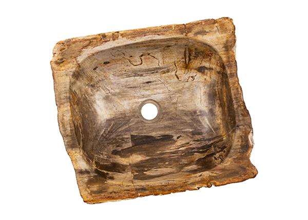 Kivistunud puidust valamu GM-139977