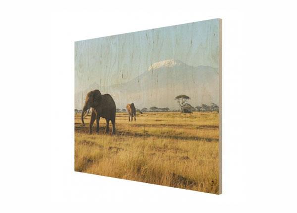 Seinapilt puidul Elephants in front of the Kilimanjaro in Kenya ED-140890