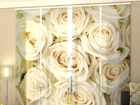 Poolpimendav paneelkardin Champagne Roses 240x240 cm