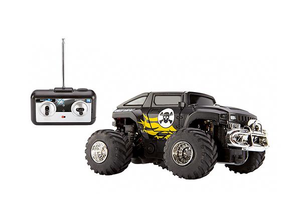 Puldiga Mini Truck RO-142605