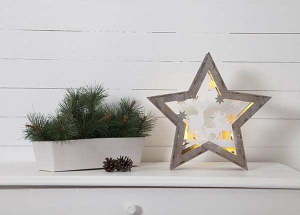 LED jõulukaunistus Fauna AA-142981