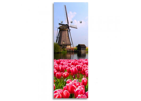 Seinanagi Tulips 1