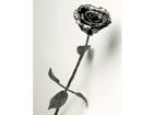 Sepistatud roos VE-25881