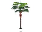 Palmipuu 210cm DA-44709