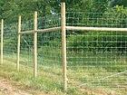 Loomavõrk 1,2x50 m PO-54706