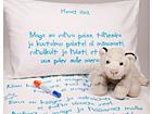 Väikelaste voodipesukomplekt poisile + tekstiilimarker VÄ-56477