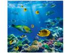 Fototapeet Underwater world 300x280cm ED-64863