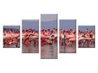 Viieosaline seinapilt Flamingod ED-65622