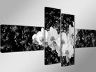 Neljaosaline seinapilt Orhidee vees ED-66691