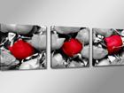 Kolmeosaline seinapilt Roos ED-67542
