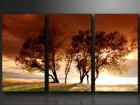 Kolmeosaline seinapilt Puud ED-67565