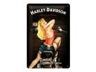 Retro metallposter Harley-Davidson Baker Babe 20x30cm SG-68154