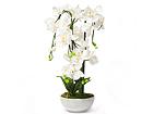 Kunstlill Valge orhidee 80 cm EV-69041