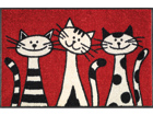 Vaip Three Cats 50x75 cm A5-74719