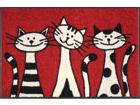 Vaip Three Cats 50x75 cm A5-74719