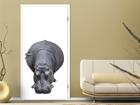 Fototapeet Big Hippo 100x210cm ED-76669
