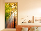 Fototapeet Forest Lights 100x210cm ED-76726