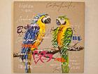 Õlimaal Papagoid 80x80 cm SI-78130