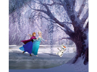 Kardin Disney Ice Kingdom, 280x245 cm ED-87007